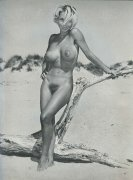 theSandfly Beautiful Beach Retro Babes! (12 pics)