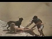theSandfly Brilliant Beach Lick, Suck & Fuck-fest, nudist indian Video Screenshot Preview