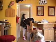 Giral nf hd sex gir Hund free images