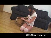 Picture Famous Little Caprice with English bulldog