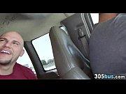 порно луни тюнз шоу видео