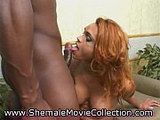 Nice Shemale Cumshots!