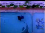 Yamini - Shakeela Devika - Tamil, shakeela hot boynimal dogxxx 412daalat bangla episode Video Screenshot Preview