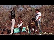 wild african safari sex...