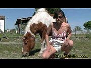 Picture Kioki en couche avec les chevaux CLIP