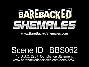 Instant Bareback Sex by Two Shemale Babes