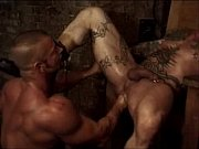 pigs – didlo fuck – Gay Porn Video