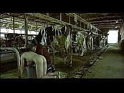 [爆乳]ホルスタイン牧場の一日です!巨乳母乳動画です。 – 巨乳おっぱい大学