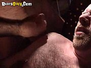 skinhead dad cums a lot – Gay Porn Video