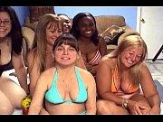 group of horny pussies