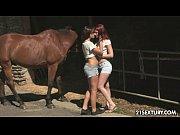 Amigas safadas fazendo sexo na fazenda