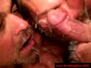 two straight mature bears share facial – Gay Porn Video
