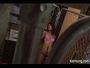 檻の中の若年キャット