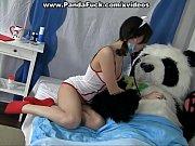 Порно кунфу панда фото