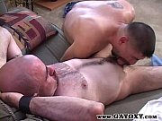 Mature Power Cock Gay Bears