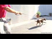 Cute Dog, Let's Fuck, dog girl sex mp4 vedioian village daughter n father sexother movei xxx hot downlaod co Video Screenshot Preview 1
