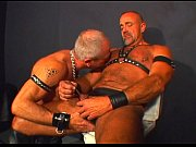 Picture Pacific Sun - Leather Bears - scene 2