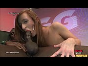 babes show their wild side in orgies