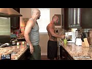 bald gays suck their pricks – Gay Porn Video
