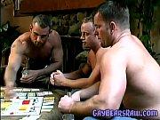 gaybears 17