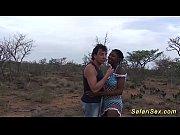 real african safari sex...