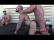 dark(082815) pigs&wolf-project – Gay Porn Video