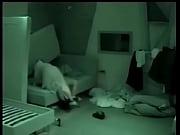 7378 polvo brasil hermano gran motel en sexo oculta- Camara