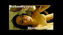 theSandfly Shooting Gallery!