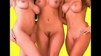 playboy playmate naked nude underwear