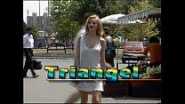 Triangel CD1