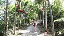 japanese island tropical tropical