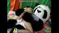 bear panda seducing girl brunette Attractive