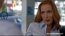 s10e03 x-files the - anderson Gillian