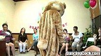 Dancingcock Alaina Fiesta