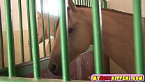 rider horse masturbating Cute