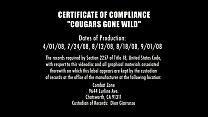 2 caresse wild gone Cougars