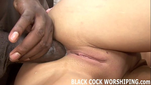 ,cock