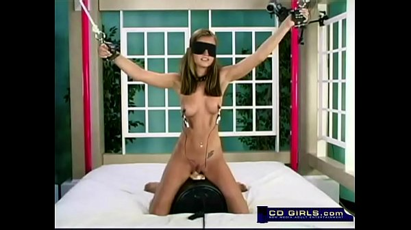 Sybian A collection from: hiracer
