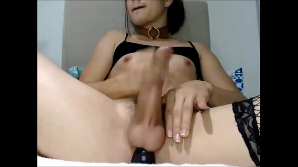 Shecock Masturbating With a Toy in her Ass