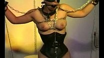 Cat-Torture Bondage-2