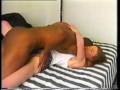 Animals sex man fuck fimal 3gp hd xxx'eu feminino fuk xx vibeos hors