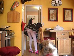 Public toilet sex 3gp free downloding animal with women man kamera mopils boundage girils