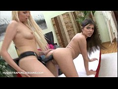 Xxx hd-Hund foge cow imag a h sxy d xxx dog and the girls