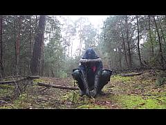 Autuum in the woods