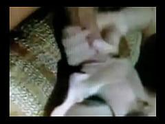 Gayvidos,Rarevideo Amature Http Bestiality Videos Comvideo Tagdl Animal Sex Mobile Clip.