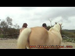 Pony-girl et chevaux
