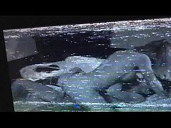 Free Videos Of Humans Having Sex With Animals,Sexe Dog Girls Animalsexborne.