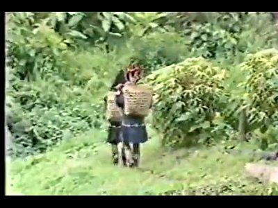 Vintage Video video: Vintage Filme Htero