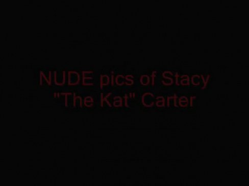 Miss kitty stacy carter the kat nude final, sorry