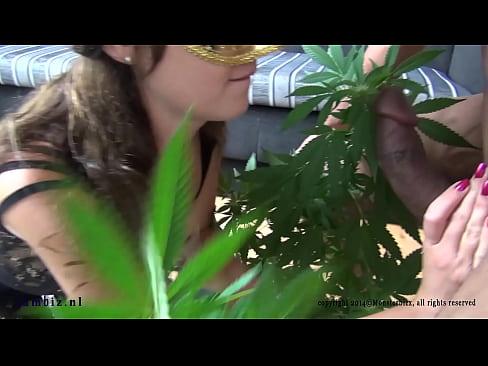 rumble in the weed jungle bukake